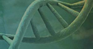 PDG DNA