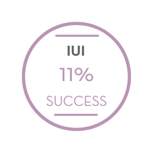 IUI Success Rates