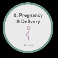 8 Pregnancy & Delivery