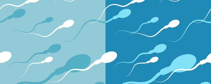 Sperm Banks