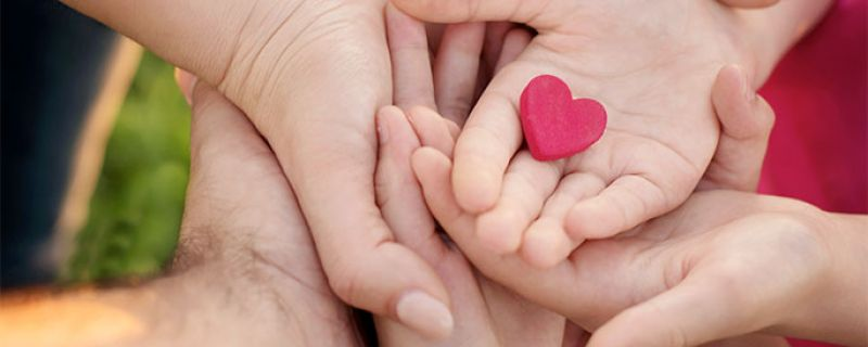 Donor Egg IVF Choosing for Success